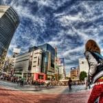 シダの群れ 第三弾 港の女歌手編|東京イベント
