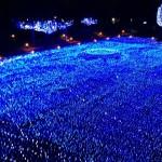 東京ミッドタウン・クリスマス2013|東京イベント