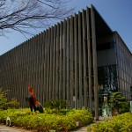 樹木の形の不思議|東京イベント