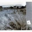 小沢剛《地蔵建立 上九一色村、1995年8月10日》